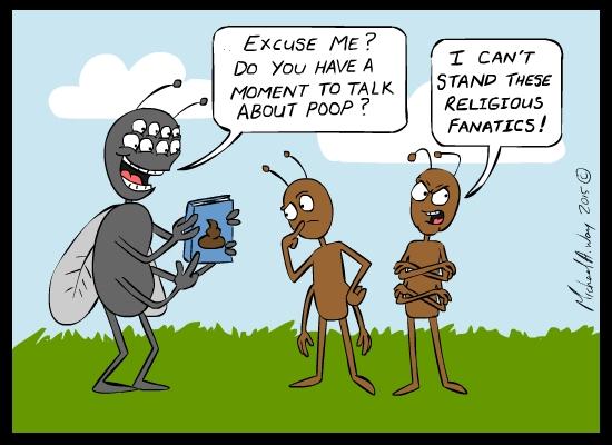 Religious ant